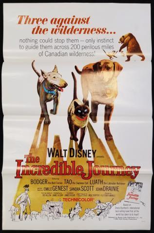 The Incredible Journey One Sheet Poster - ID: novdisney17324 Walt Disney