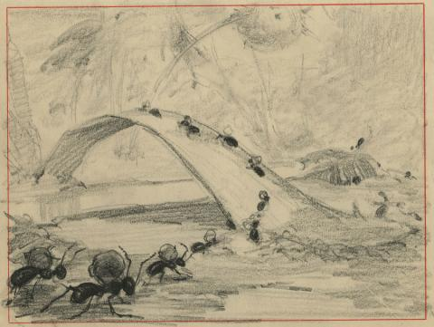 Bambi Storyboard Drawing - ID: marbambi18117 Walt Disney