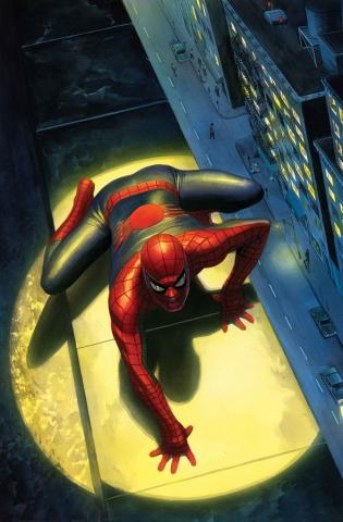 The Spectacular Spider-Man Signed Giclee on Canvas Print - ID: aprrossAR0167C Alex Ross