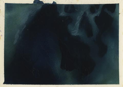 Secret of Nimh Background Color Key Concept - ID: aprnimh21056 Don Bluth