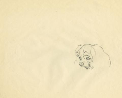 Lady and the Tramp Production Drawing - ID: augtramp21091 Walt Disney